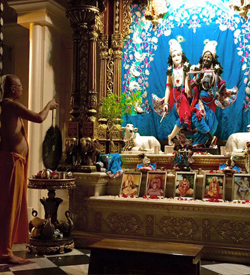 Lokanath Swami